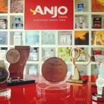 Retrospectiva: Prêmios Anjo 2013