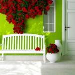 Ousando com o Verde Limão