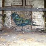 A arte urbana do artista Dzia