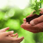 Oito iniciativas por um planeta mais sustentável