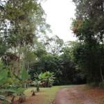Anjo Tintas e prefeitura de Criciúma firmam parceria para manter área de preservação