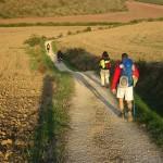 Lançamento Compostela Passo a Passo: livro dá dicas de como enfrentar o Caminho de Santiago